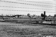 Auschwitz Barbed Wire