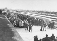 Iconic Photo of the Selection Ramp at Auschwitz-Birkenau